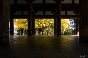 会津のおススメ紅葉スポット♪ ★ 新宮熊野神社『長床』の大イチョウ ~続編~ ★