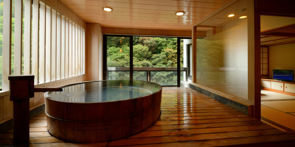 Rooms with a panoramic bath (private spring source)